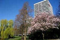 Wohnen über den Dächern der Stadt in der MARITIM-Residenz in Gelsenkirchen
