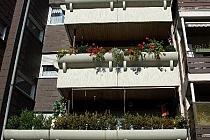 Sehr schöne 3.5-Raum Wohnung MIT BALKON
