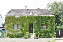Freistehendes Haus mit üppigem Garten auf einem 1.423 m² großen eigenen Grundstück in GE - Erle