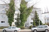 Hervorragend für Paare und Familien mit Kind - 3,5 - Raum - Wohnung mit Balkon in Herne-Börning
